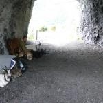 wenig Schutz bietet dieses Tunnel vor Gewittersturm...